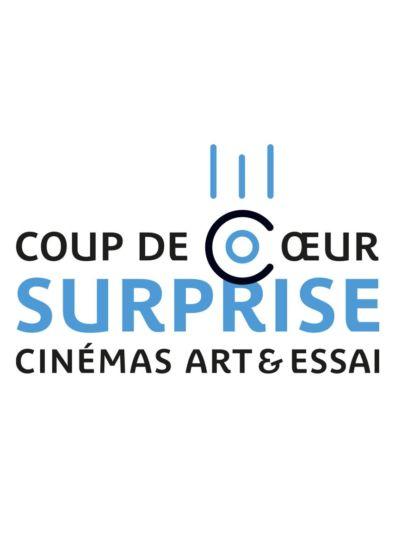 Affiche film Coup de cœur surprise